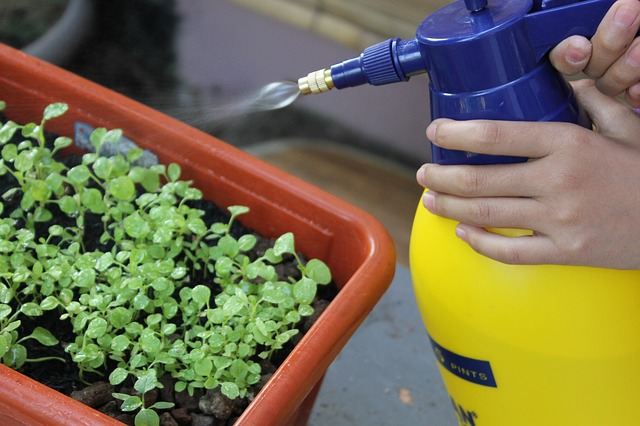 Organic Pest Control: The Safe Alternative to Harmful Chemicals