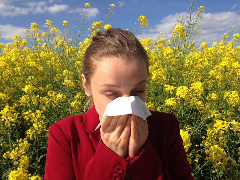 13 Ways to Reduce Pollen In Your Home
